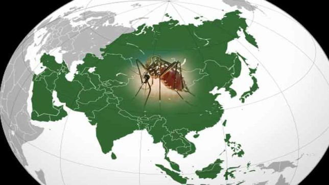 Zika virus, WHO, World Health Organisation, Asia, India, Singapore, Thailand, Health News