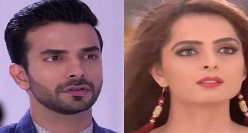 Kundali Bhagya 15 April 2019 Full Episode Written Updates: karan challenged preeta to for sharlin and prithvi affair