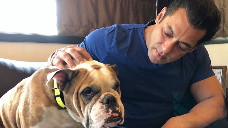 Salman-Khan-spends-time--with-his-Dog-Called-him-most-loving,-loyal-and-selfless